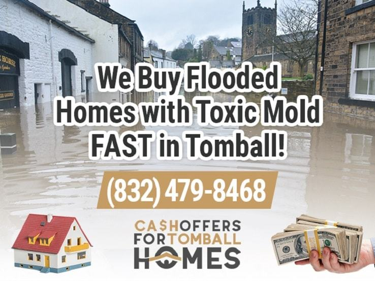tomball water damage and mold